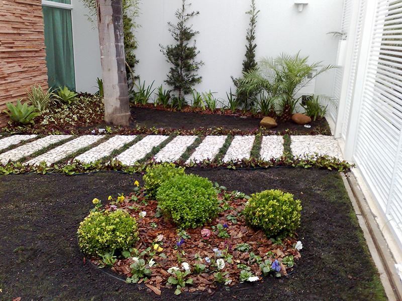 plantas para jardim tropical:Jardim Tropical
