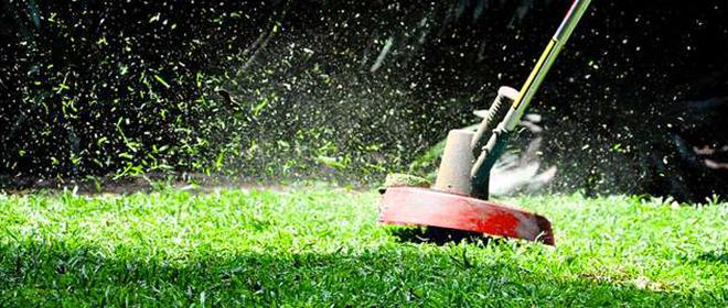 A importância do corte da grama